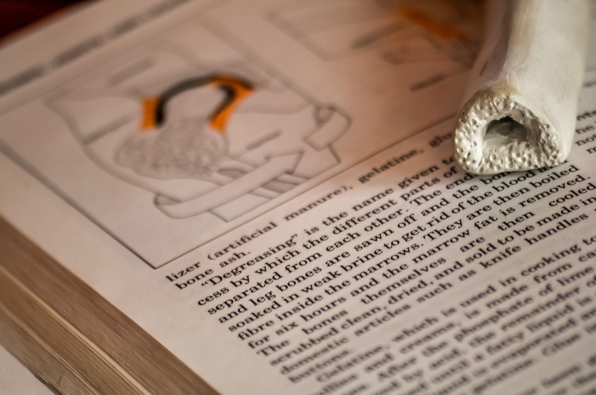 Presiona esta imagen de un libro enfocado en su texto para ver el video