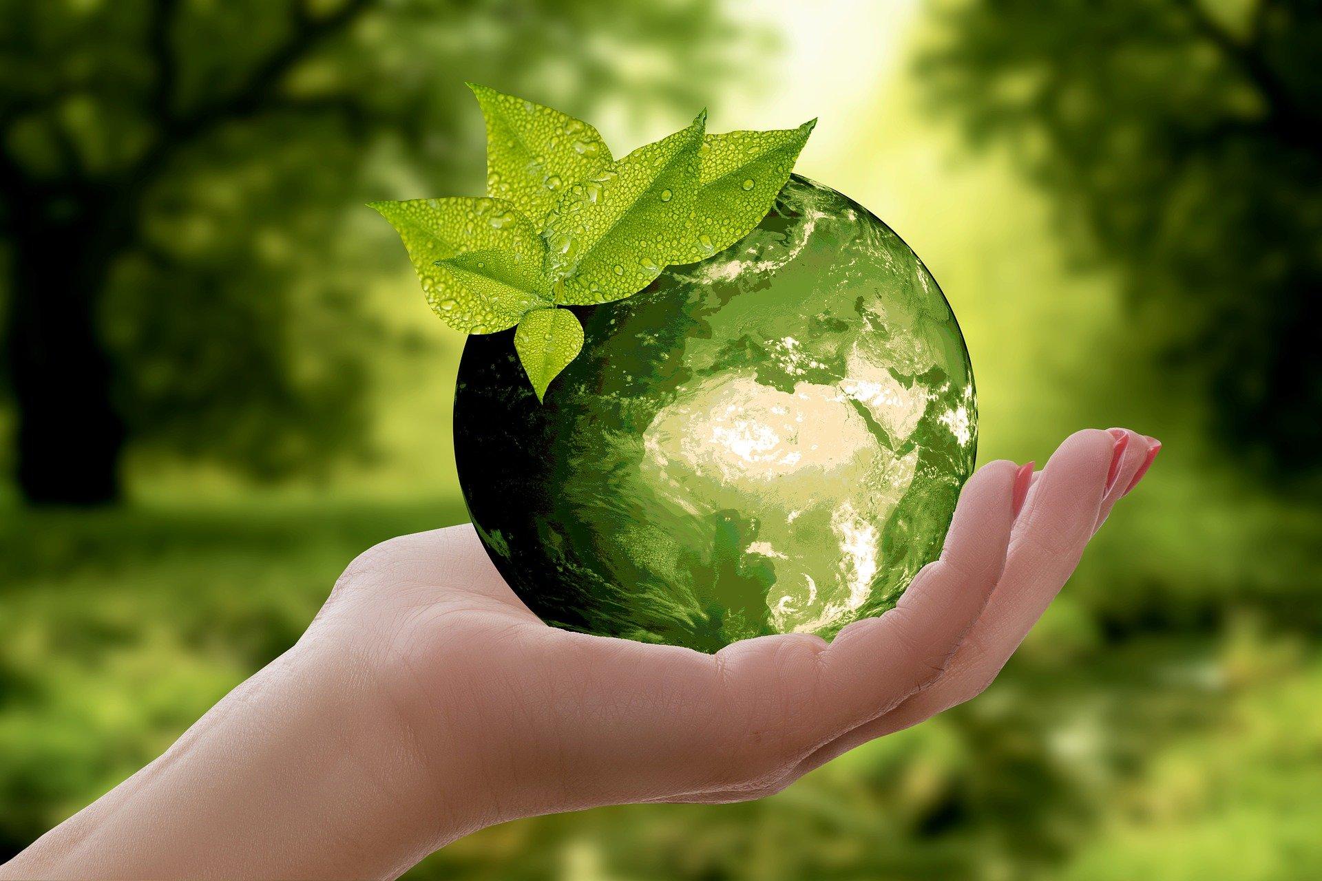 Presiona esta imagen de una mano sosteniendo una esfera verde simulando el planeta tierra para ver el video